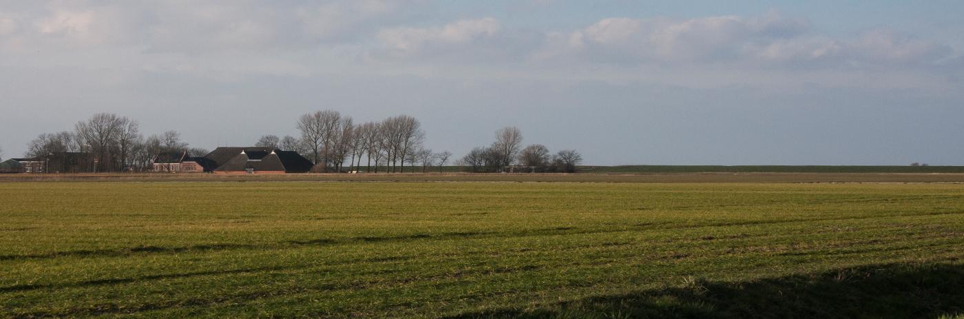 landschap 8489_1
